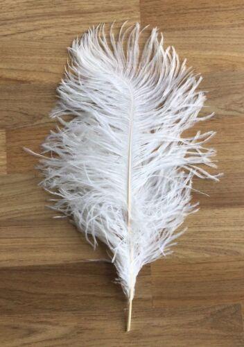British Retro Beautiful Ostrich Feathers 6-24 inches//15-60 cm Wedding Craft Arts