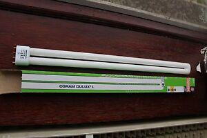 3-x-Osram-Dulux-L-Lumilux-2g11-55w-830-4-pin-CFL-Lampadina-Lampada-3000k-Bianco-Caldo