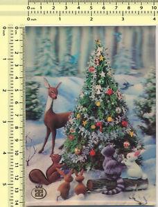 Forest Animals Postcard