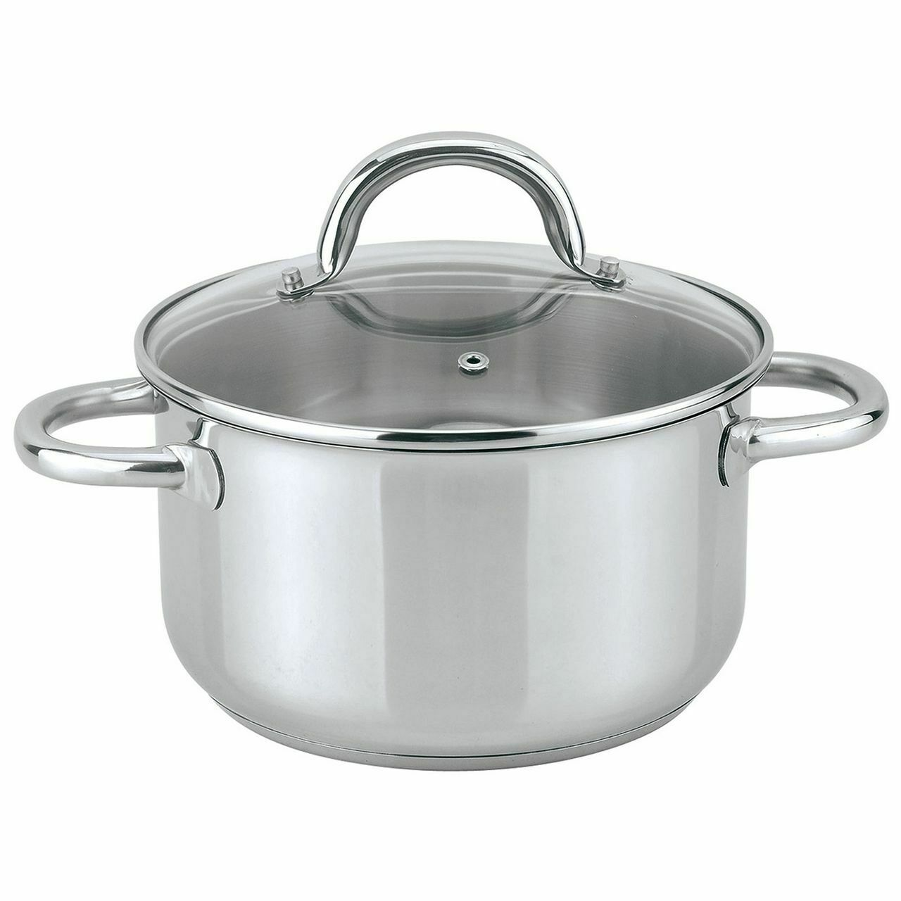 Ssw Induction Saucepan with Lid, Stainless Steel, Ø 24 cm, 6,1 L