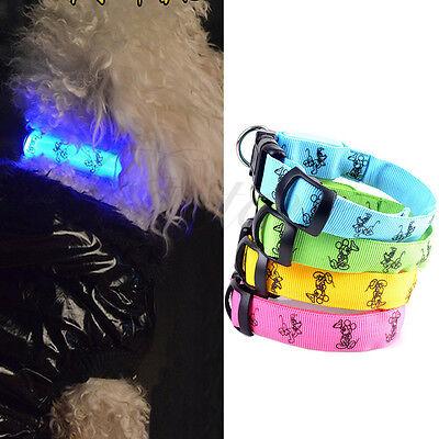 Adjustable Lovely Pet Dog  Flashing Safety Nylon Night Glow Collar LED Lights