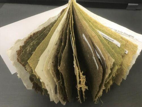 Papel hecha a mano de plantas silvestres y jardín-Paquete mezclado