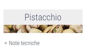 Crema-Delizia-Al-Pistacchio-Fredda-Professionale-Per-Granitore-Senza-Glutine