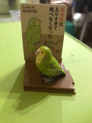 Japan Budgerigar parakeet Parrot PVC mini figurine Figure roly poly toy B