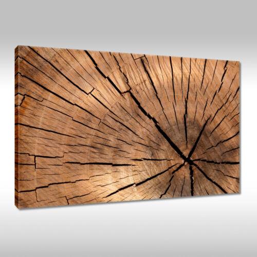 Canvas Picture Print Mural Art Framework Wooden Board Texture