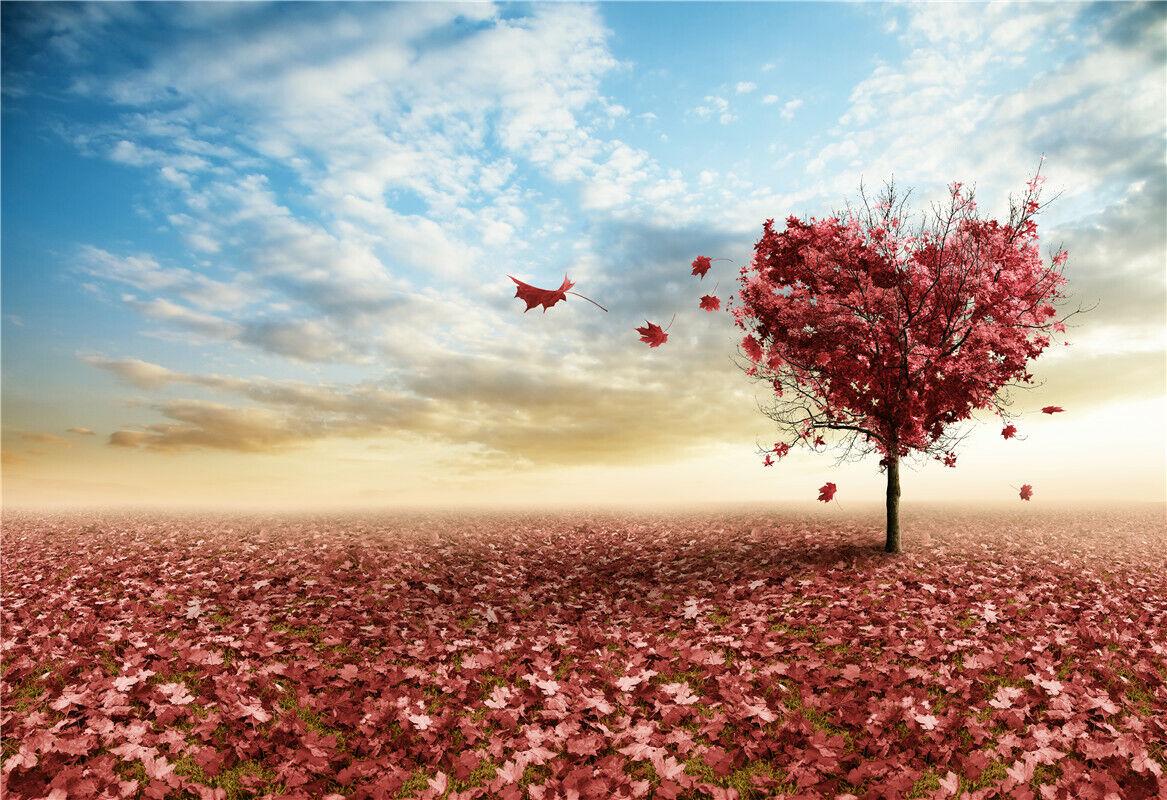 7x7FT Vinyl Photo Backdrops,Fall,Autumn Woodland Nature Photoshoot Props Photo Background Studio Prop