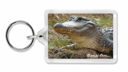 AR-C1boK Welsh Crocodile /'Bampi Oeri/' Photo Keyring Animal Gift