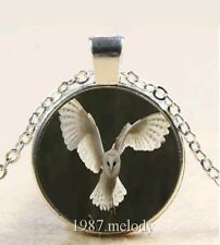 Gothic Barn Owl Pendant Necklace Witch Wiccan Goth Glass Dome Photo Labyrinth UK