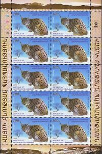 Honesty Nagorno Karabakh Fauna Lynx Wwf Armenia Sheet Of 10 Mnh 2009 R16781 Armenia