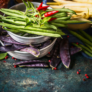 Details zu artissimo Glasbild 20x20cm Bild aus Glas Wandbild Küche  Küchenbild Kräuter bunt