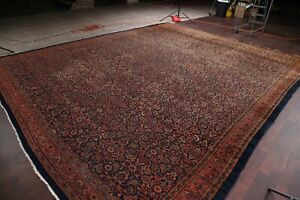 Pre-1900-Palace-Antique-All-Over-Malayer-Area-Rug-VEGETABLE-DYE-Large-Wool-14x17