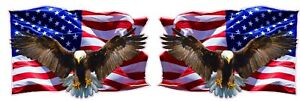 Soaring-Bald-Eagle-American-Flag-Decal-right-amp-left-X-Large-48-034-Free-Shipping