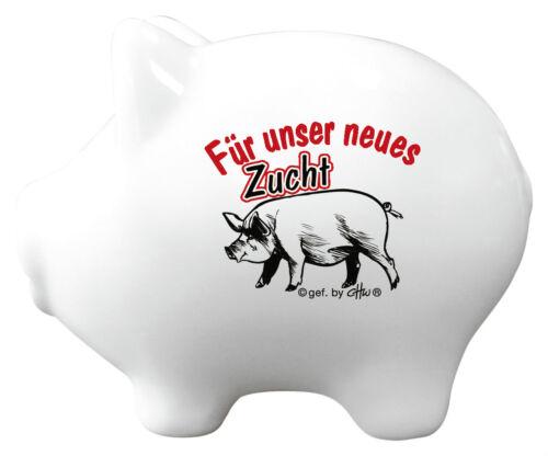 2 Sprachen Zucht Schwein Keramik-Sparschwein hochwertige Spardose Breeding