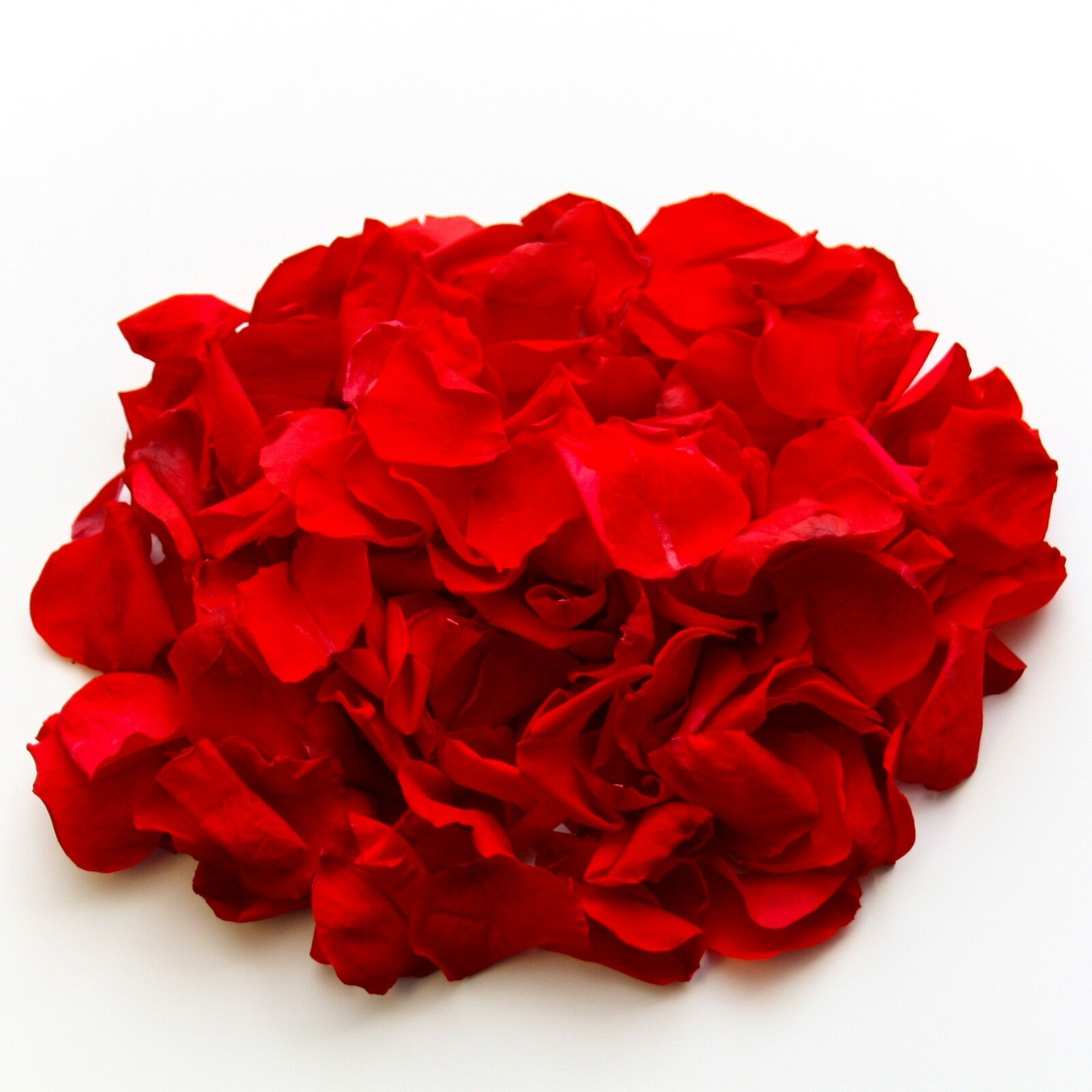 rot rot rot natural biodegradable Rosa petals for wedding confetti   decoration 67d02c