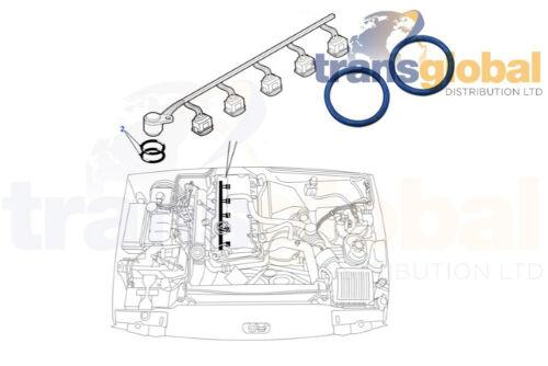 Moteur Injecteur Faisceau De Câbles O Anneaux x2 Pour Land Rover Defender Discovery TD5