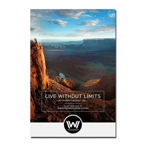 Westworld TV Series Show Season Art Silk Canvas Poster 12x18 24x36 inches