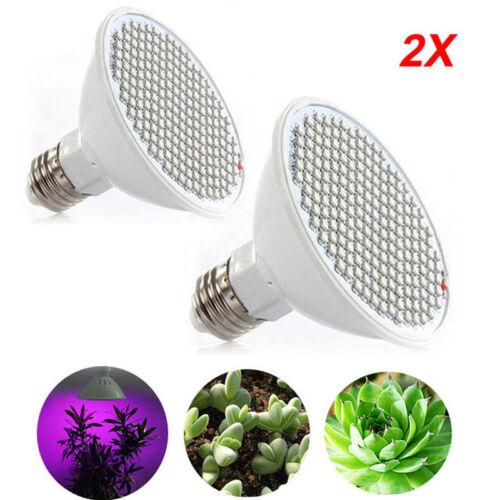 Dual Head 200 Led Flower Plant Grow Light Desk Kit indoor Greenhouse hydro Clip