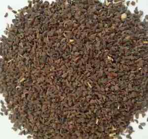 Peganum-harmala-Samen-100-g-Saatgut-Syrische-Steppenraute