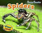 Spiders by Sian Smith (Paperback, 2013)