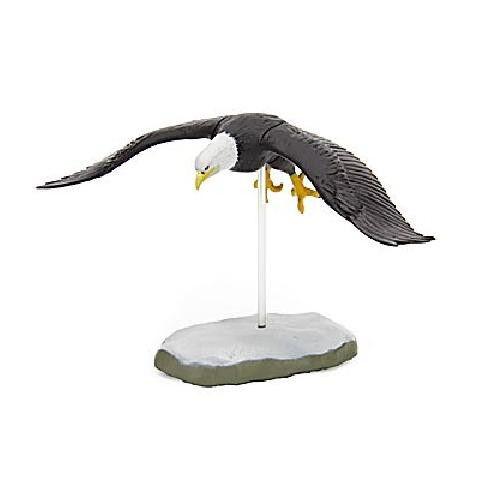 RARE Kaiyodo Colorata Raptor White Tailed Bald Eagle Bird Figure Japan Retired