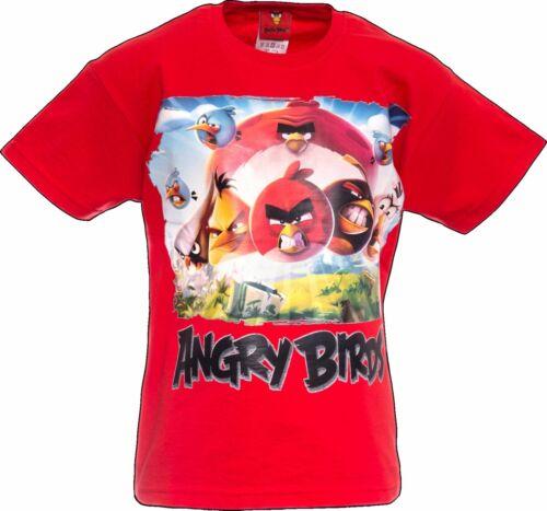 Angry Birds Offiziell Kinder T-Shirt Alter 12-13 Jahre Jugend Shirt Rot