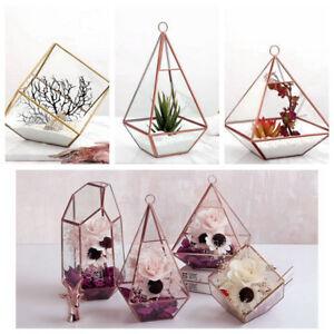 Diy Wall Hanging Glass Cube Geometric Terrarium Tabletop Succulent