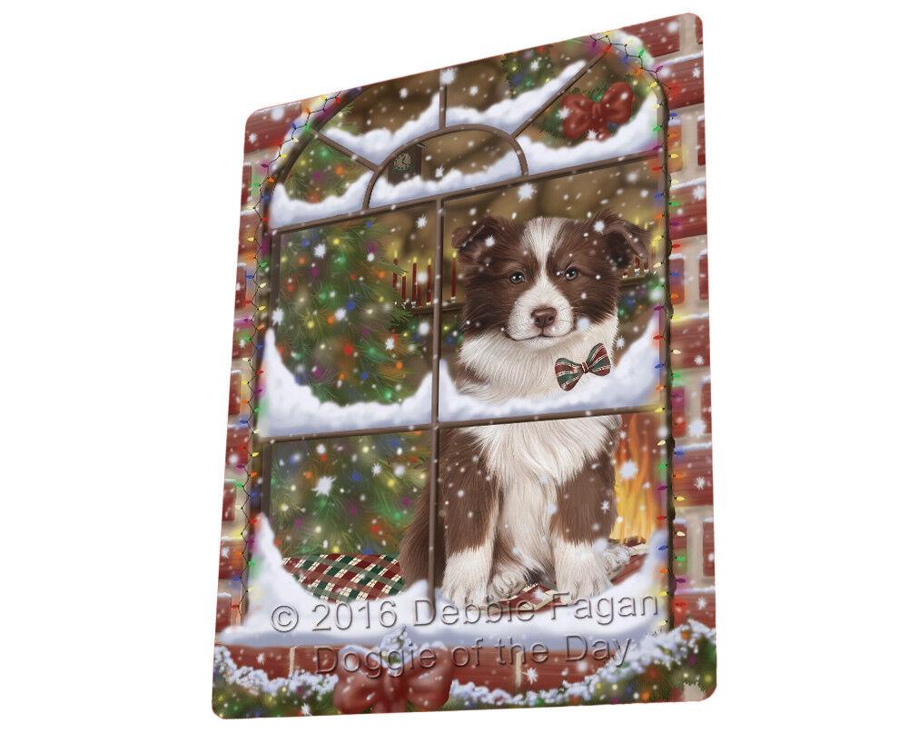 Please Come Home Christmas Border Collie Dog Sitting Window Blanket BLNKT53787