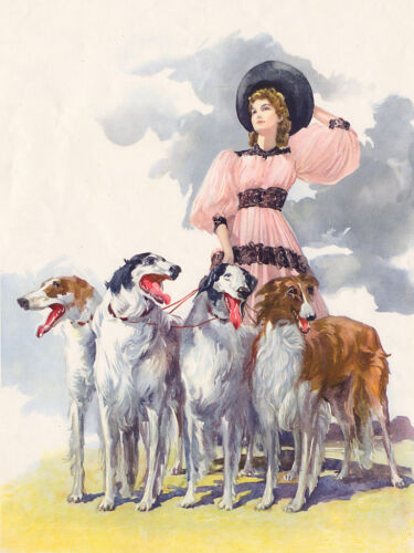 BORZOI CHARMING DOG GREETINGS NOTE CARD FOUR BEAUTIFUL DOGS /& LADY IN LARGE HAT