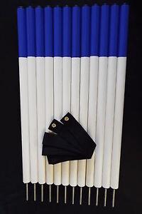 Equipement de dressage pour bâtons d'agilité pour chien, 12 bâtons avec noir, bleu royal, violet, rose, jaune, rouge, bleu clair, vert foncé, pomme verte