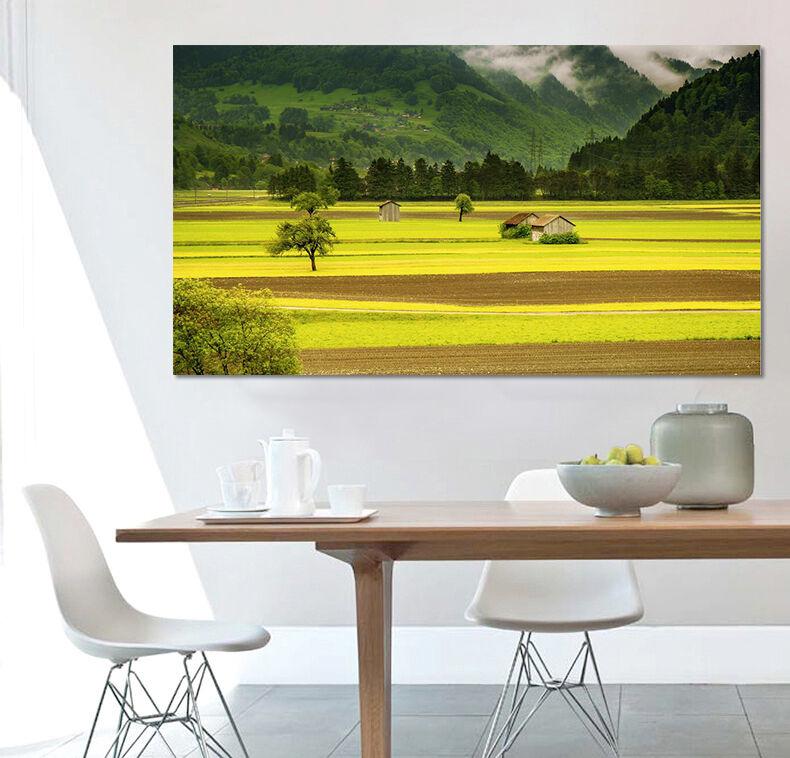 3D Die Felder der hügel 622 Fototapeten Wandbild BildTapete Familie AJSTORE DE