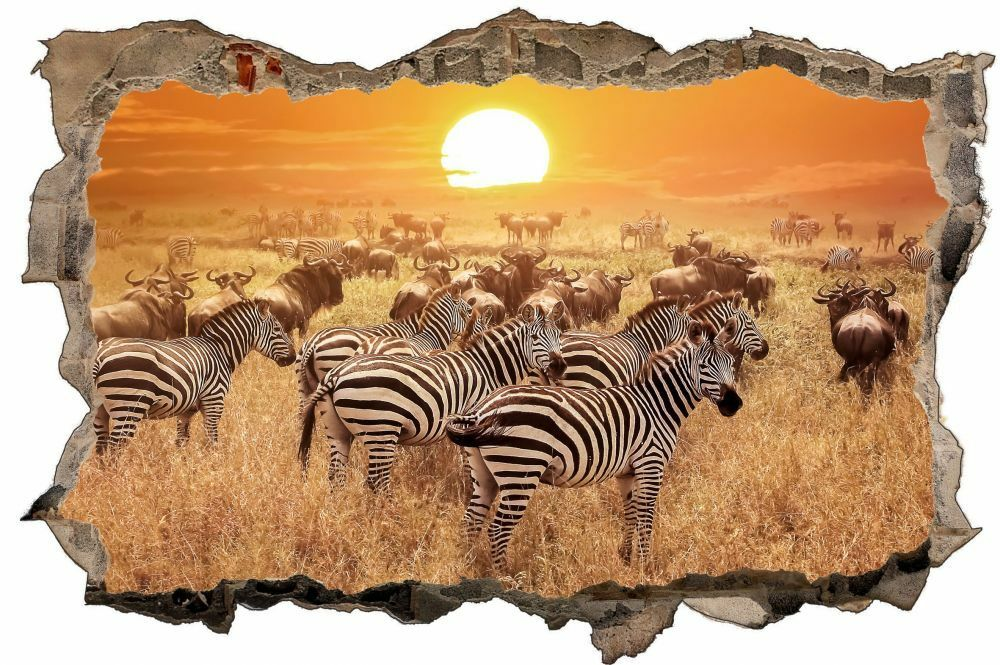Zebra Sticker Safari Coucher de soleil Mural Sticker Zebra Autocollant d1303 6e79e5