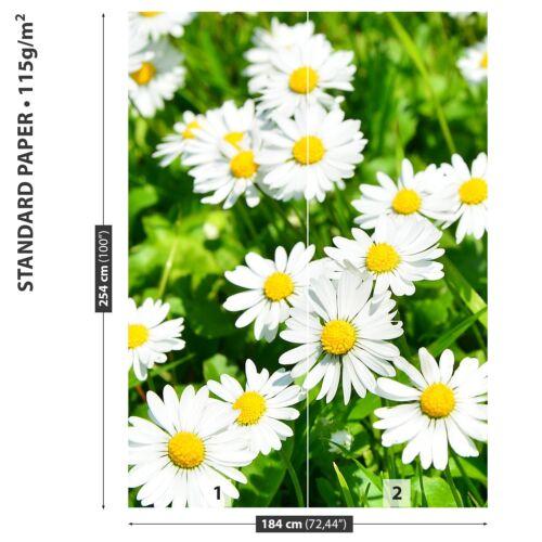 Papier-Fototapete Fototapeten Tapete aus Papier Poster Foto Gänseblümchen Wiese