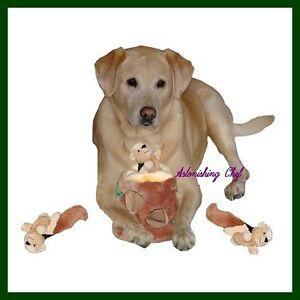 kyjen hide a squirrel puzzle toy for dogs