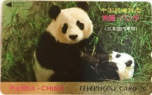 Panda-Phone-Card-from-Japan-for-collectors