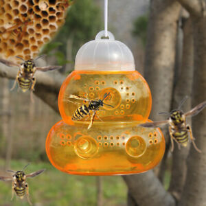 Beehive-Wasp-Trap-Hornets-Yellow-Jackets-Wasp-Repellent-Bee-Catcher-Hanging-T-D
