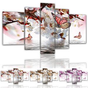 BM-color-y-tamano-a-elegir-Lienzo-Imagenes-7738-Mariposa-Flores-del-cerezo