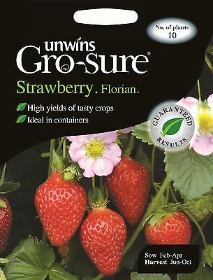 Unwins Pictorial Packet - Strawberry Florian F1 - 10 Seeds