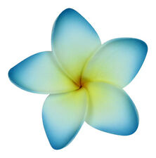Hawaii Hair Clip Lei Party Luau Flower Dance Beach Photo Foam Plumeria Blue Edge