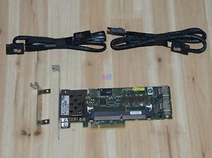 462919-001-HP-Smart-Array-P410-SP-Raid-2x70CM-SAS-Data-line