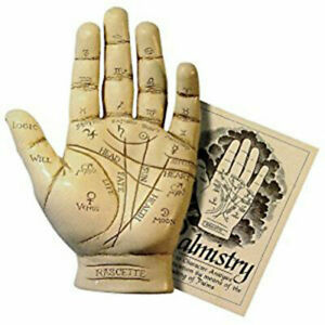 NEW-Palmistry-Hand-Model-Resin-Sculpture-w-Booklet-Fortune-Telling-Palm-Reading
