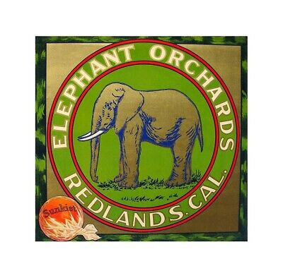 office accent Elephant Orchards Redland CA Oranges crate label poster US Seller