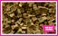LEGO-Brique-Bundle-25-pieces-Taille-2x2-Choisir-Votre-Couleur miniature 15
