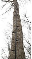 Tree Stand 25' Climbing Sticks Hunting Ladder Deer