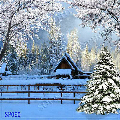 Christmas 10'x10' Computer-painted Scenic Photo Background Backdrop SP060B881