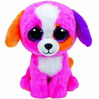 Ty Beanie Babies Boo's Precious Dog 6 Stuffed Collectible Plush Toy