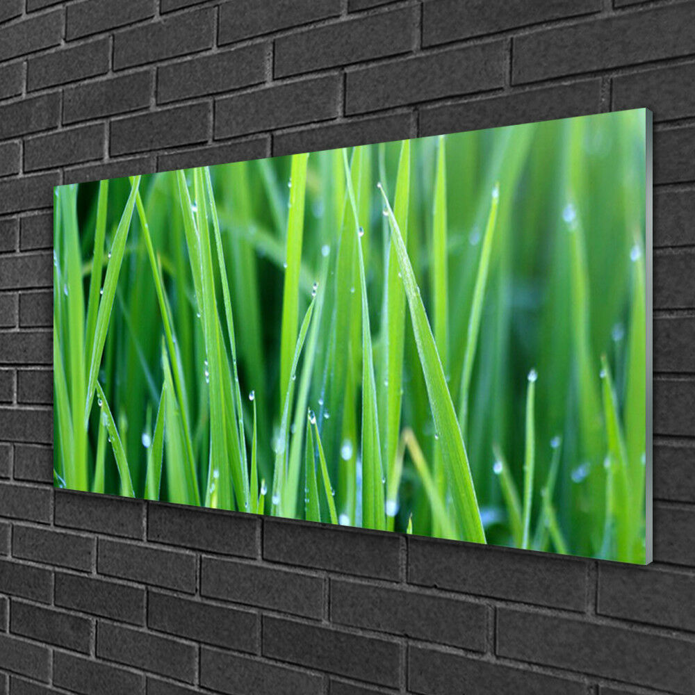 Glass print Wall art 100x50 Image Picture Weed Nature
