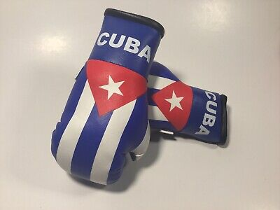Puerto Rico Flag Boxing Gloves New 2019
