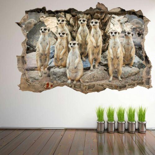 Meerkat Animal 3D Wall Art Sticker Mural Decal Poster Kids Room Decor DL35