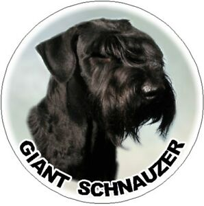 2-Giant-Schnauzer-Car-Stickers-By-Starprint