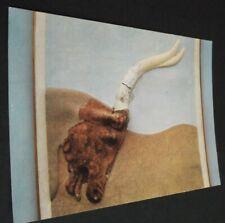 B.C. Greek Post Card From Haga Triadha 16th cent Boxer Vase Heraklion Crete